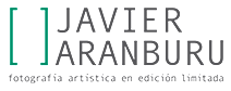Logo de Javier Aranburu